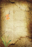 Vintage background with flowers. 28 Royalty Free Stock Photo