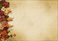 Vintage background with flowers and autumn leaves Stock Images