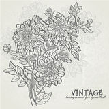 Vintage background with flowers dahlias-EPS10. Vintage background with flowers dahlias. Background for your text Stock Photography