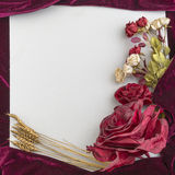 Vintage background with flowers Royalty Free Stock Images