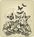 Vintage background with flowers and flying butterf. Lies, hand-drawing. Vector illustration Royalty Free Stock Photography