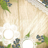 Vintage background with flowers and lace Royalty Free Stock Photos