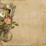 Vintage background with flowers and lace Royalty Free Stock Images