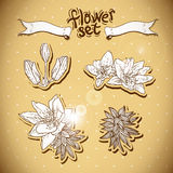 Vintage background with flowers. Royalty Free Stock Photography