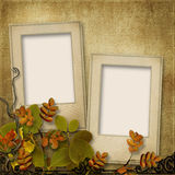 Vintage background with frame for photo and autumn leaves Stock Images