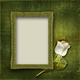Vintage background with frame and rose Stock Images