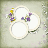 Vintage background with frame and spring flowers Royalty Free Stock Photography
