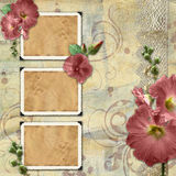 Vintage background with frames. And flowers Royalty Free Stock Images