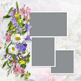 Vintage background with frames and a bouquet of summer meadow flower Stock Images