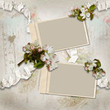 Vintage background with frames and flowers Royalty Free Stock Photos