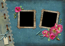 Vintage background with frames for photos. And pink flowers Royalty Free Stock Image