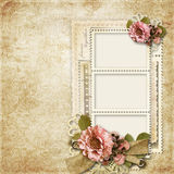 Vintage background with frames for photos and flowers Royalty Free Stock Images