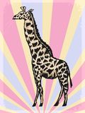Vintage background with giraffe Stock Image