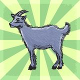 Vintage background with goat Royalty Free Stock Photography