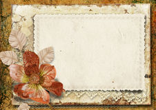 Vintage  background with gorgeous flower Royalty Free Stock Image