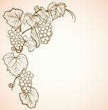 Vintage background with grapes. Vintage background with drawing of grapes Stock Photo