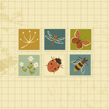 Vintage background with insects cards Stock Images