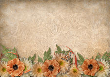 Vintage background with lace and border of beautiful flowers Stock Image