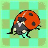 Vintage background with ladybird Stock Image