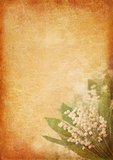 Vintage background with lily of the valley Stock Images
