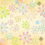 Spring daisy flowers over beige old paper background with circle Royalty Free Stock Image