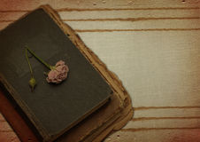 Vintage background with old book and flower Royalty Free Stock Image