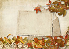 Vintage background with old card and autumn decor Stock Image