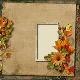 Vintage background with old frame and autumn bouquet Stock Image