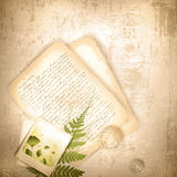 Vintage background with with old letter Royalty Free Stock Photo