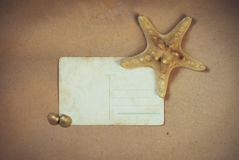 Vintage background with old postcard,. Starfish and seashells Stock Image