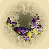 Vintage background with ornament and butterflies, hand-drawing. Stock Photos