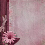 Vintage background. page family album Stock Photography