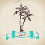 Vintage background with palms Stock Photo