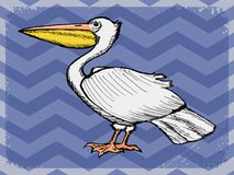 Vintage background with pelican Royalty Free Stock Photos