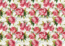 Vintage background with peonies and handwriting Stock Photography