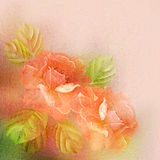 Textured romantic background with roses and leaves Royalty Free Stock Photography