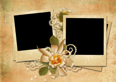 Vintage background with a polaroid-framework and a rose Stock Images