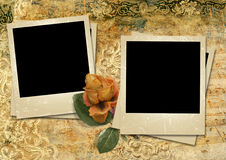Vintage background with a polaroid-framework and a rose Royalty Free Stock Image