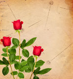 Vintage background with red roses Stock Image
