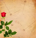 Vintage background with red roses Stock Images