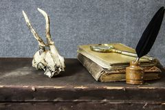 Vintage background. Old items on a table. stock image