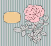 Vintage background with rose Stock Photo