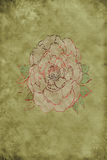 Vintage Background with Rose royalty free stock image