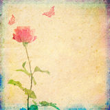 Vintage background with rose and butterflies. Illustration Royalty Free Stock Photography