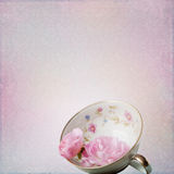 Vintage background with rose and cup Stock Images