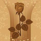 Vintage background with rose silhouette Royalty Free Stock Photo