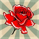 Vintage background with rose Royalty Free Stock Photos