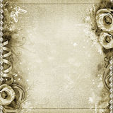Vintage background with  roses, lace Royalty Free Stock Images
