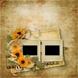 Vintage background with slides for photo and flowers Royalty Free Stock Photos