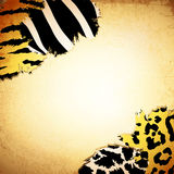 Vintage background with some animal prints Royalty Free Stock Photo
